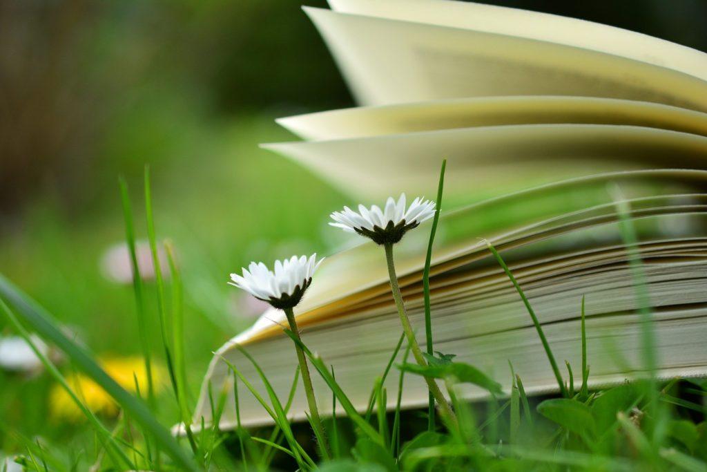 livre éducation fleur
